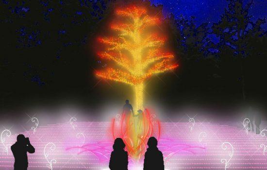 モーションセンサーで花開く手の動きに反応「秋の花畑」写真
